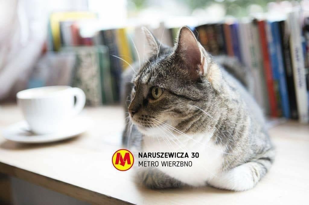 Miau Cafe - adres Naruszewicza 30 Warszawa