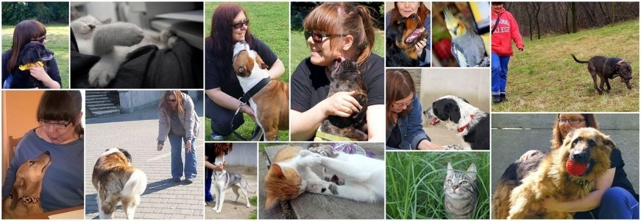 AnimalPax - wyjątkowe miejsce dla psów! Pomóż spełniać nasze i psie marzenia!