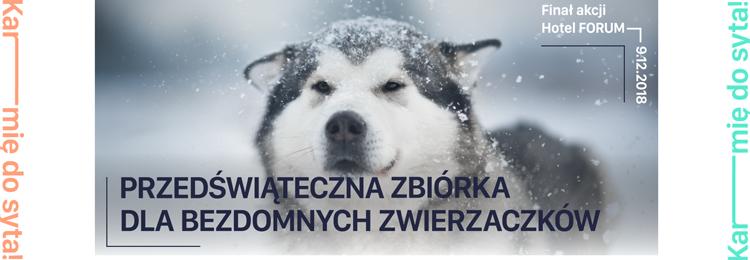 #KarmieDoSyta i jak należy! - zbiórka na specjalistyczne karmy