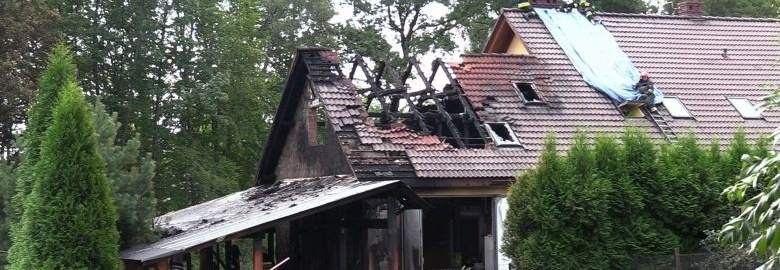 Odbudowa zniszczeń po pożarze hotelu dla psów