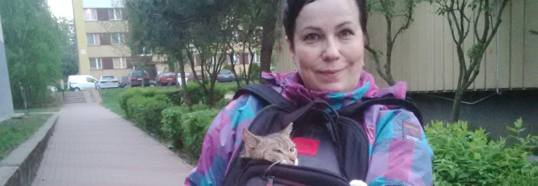 Puszki dla bezdomnych kotów!