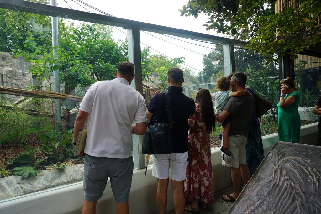Zwiedzanie VIP wrocławskiego Zoo z opiekunem niedźwiedzi dla 5 osób!
