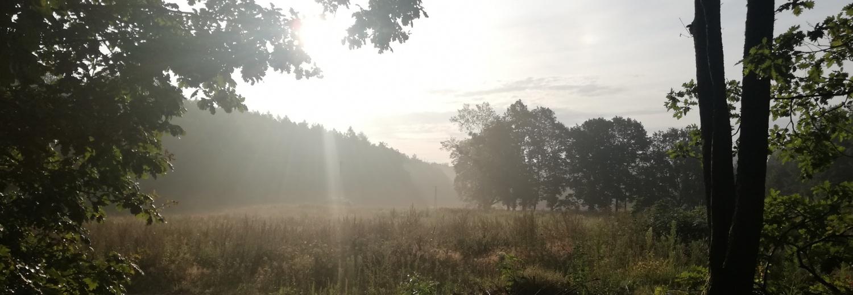 akcja STOP BLOKOWISKU ! Gdynia - Kacze Buki 1709 Ratujemy zwierzęta, las i Trójmiejski Park ...
