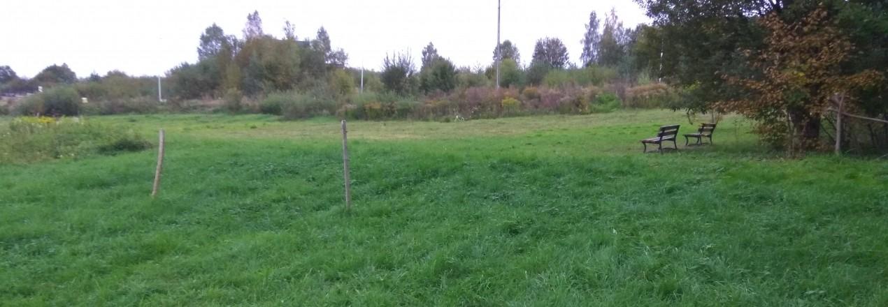 Park Zacisze w Olsztynie