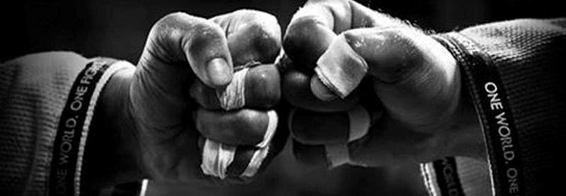Zbieram na operację bioder, aby nadal móc trenować sporty walki :)