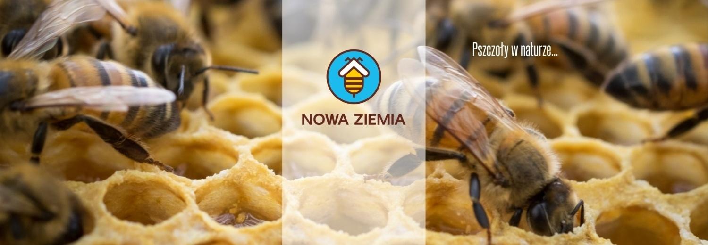 """Powołanie do życia Fundacji Ochrony Pszczół """"Nowa Ziemia"""""""