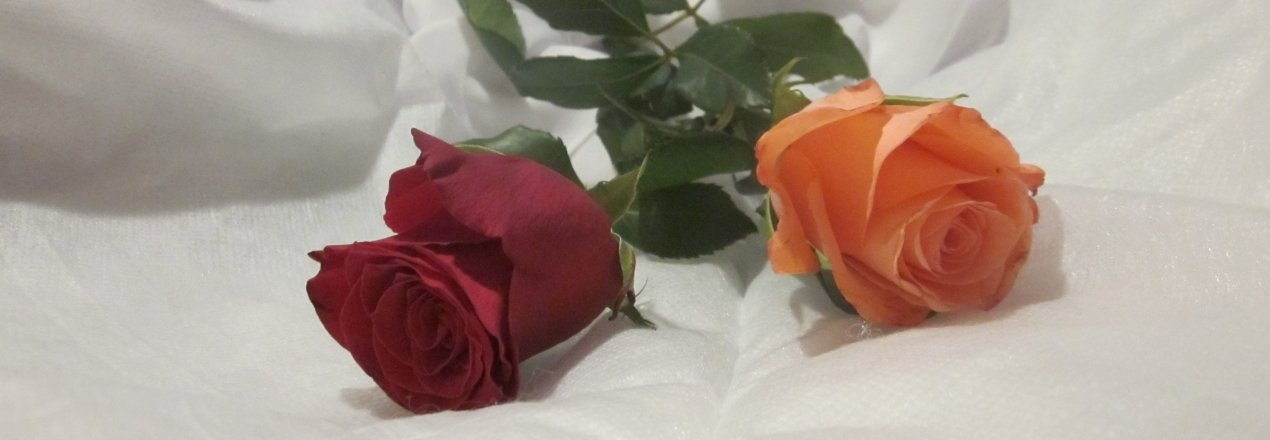 życie usłane kwiatami