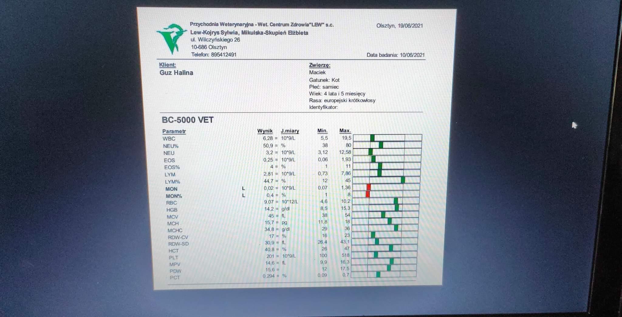 bb2c787cd15a222c.jpeg