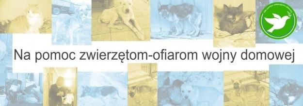 Na pomoc zwierzętom-ofiarom wojny domowej na Ukrainie