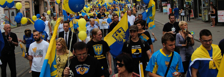 Organizacja Marszu Autonomii 13.07.2019 r.