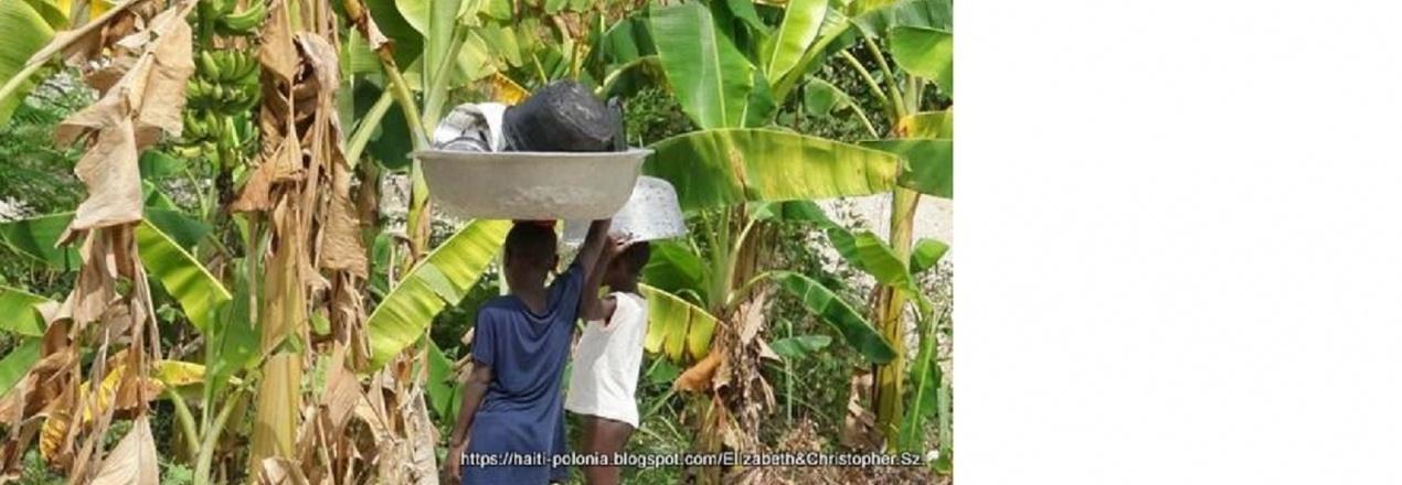Pomoc Haiti-Cazale prąd