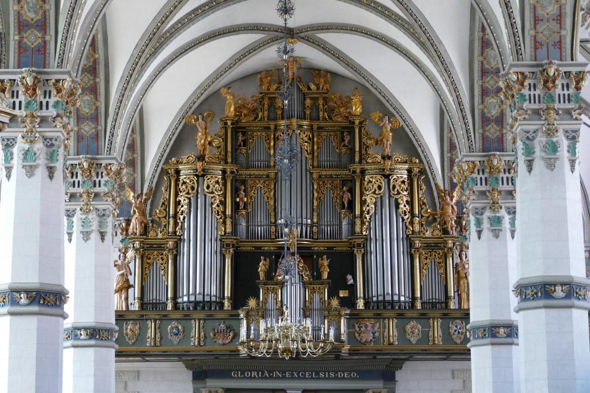 Warsztaty organowe