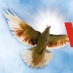 Stowarzyszenie Szkoła Nowej Ewangelizacji Diecezji Bydgoskiej