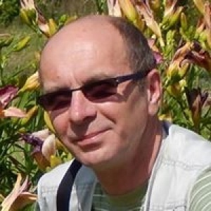 Tadeusz Dul